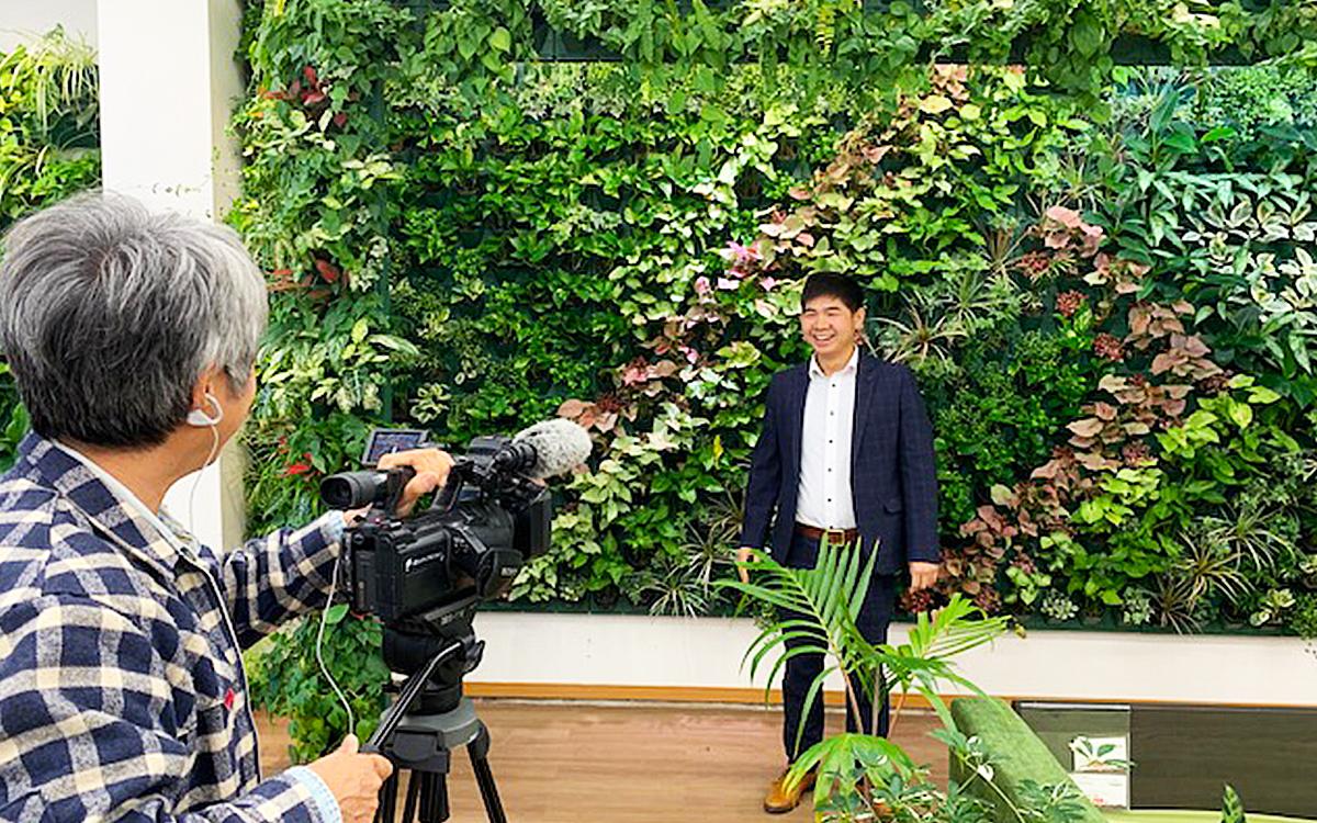 壁面緑化のTV撮影の画像