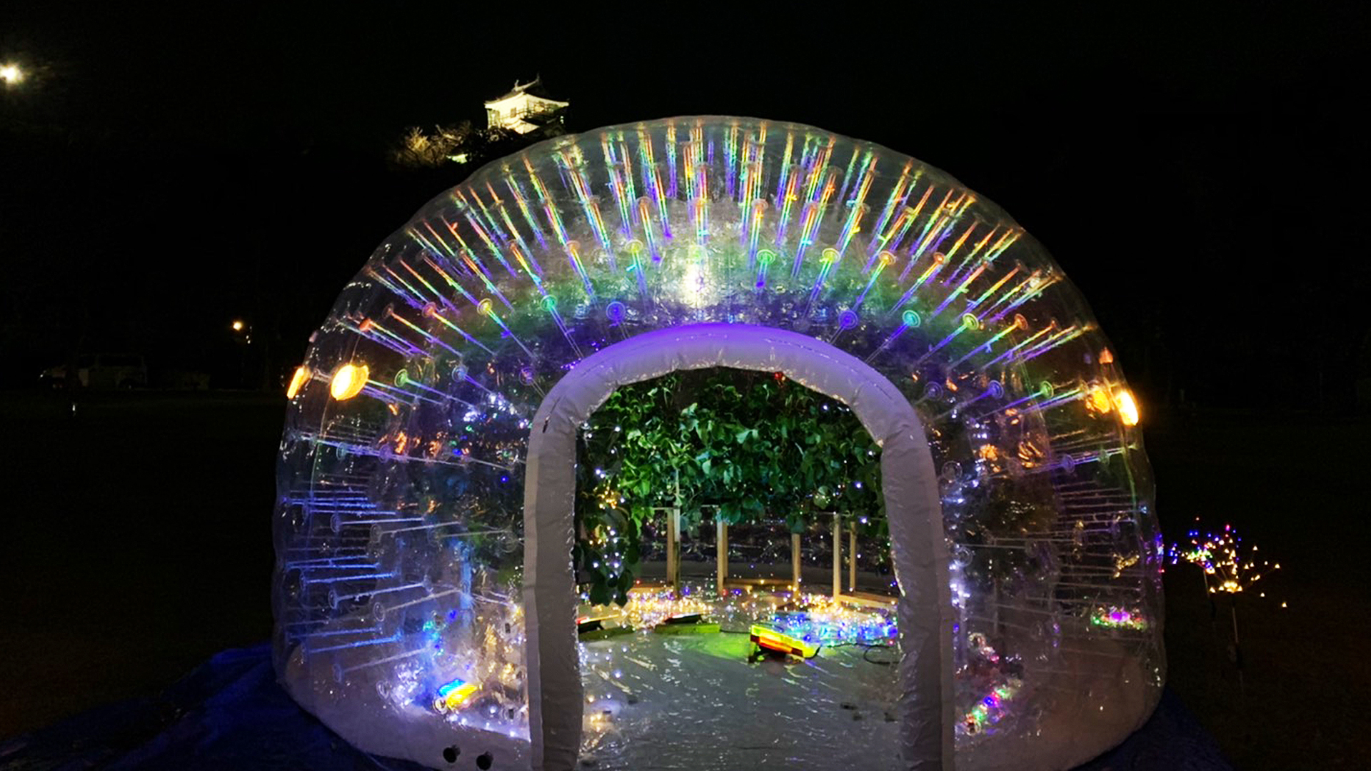浜松パイフォトニクスとマラナタの共同ライトアップの画像