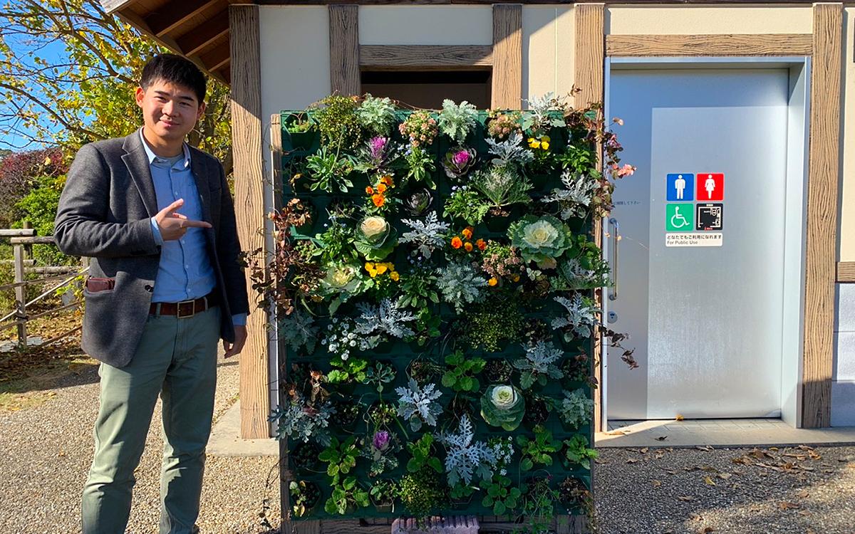 佐鳴湖公園のトイレ前の壁面緑化を施工した後の写真