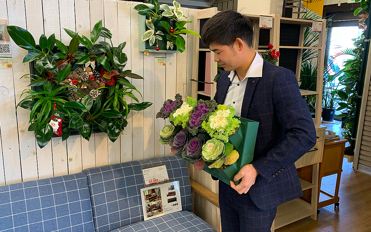 壁面緑化のご紹介。中日新聞さんに