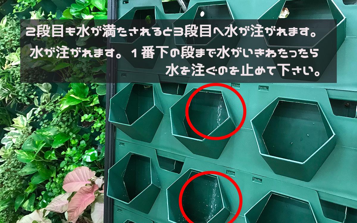 壁面緑化の水やり方法の画像その3