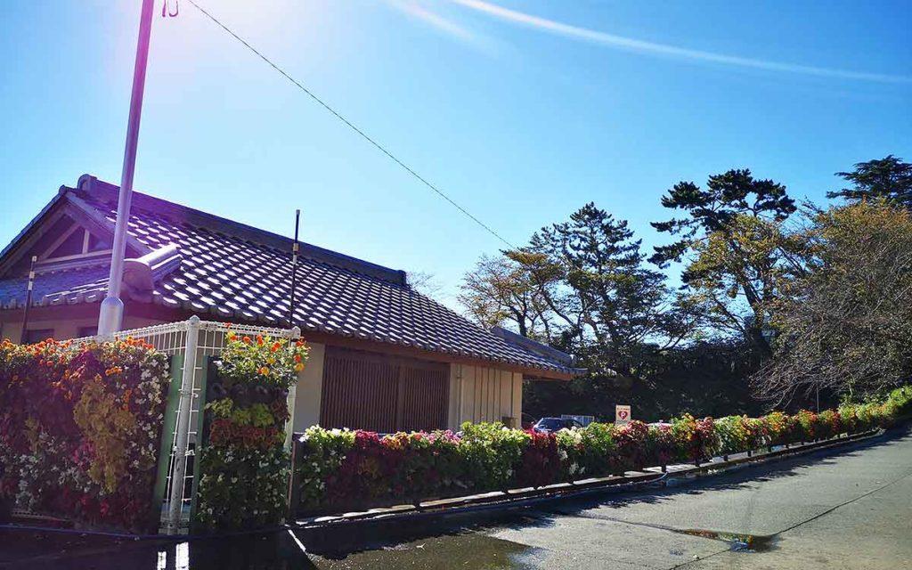 浜松城公園のスターバックス前の壁面緑化の画像