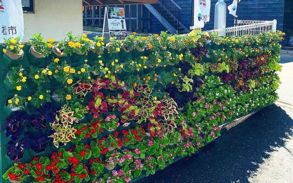 浜松城公園の壁面緑化の完成画像の全体部分