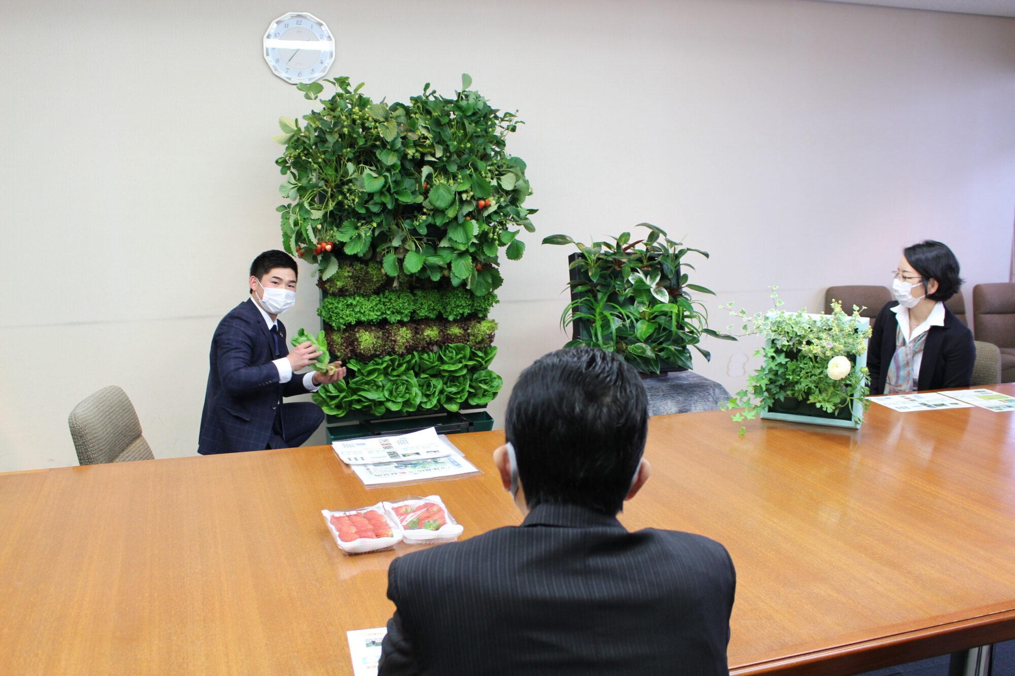 壁面緑化を説明する呉社長と康友市長